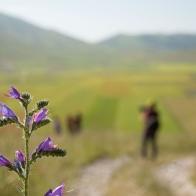 Castelluccio Di Norcia - escursione fotografica (1)